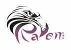 RAVEN CMD COMPANY